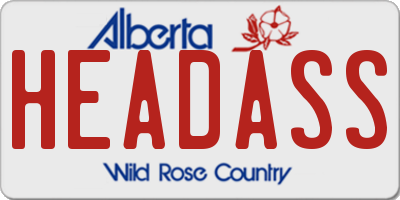 AB license plate HEADASS