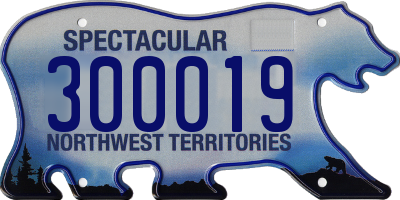 NT license plate 300019