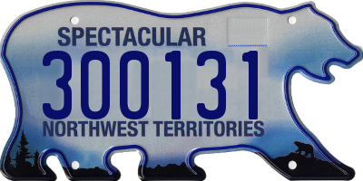 NT license plate 300131