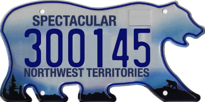 NT license plate 300145
