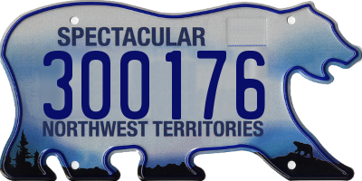 NT license plate 300176