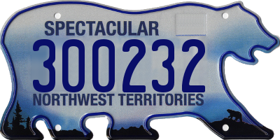 NT license plate 300232
