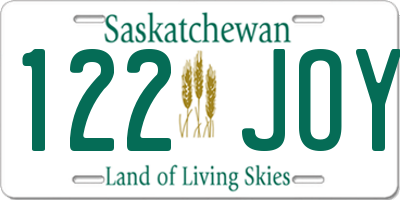 SK license plate 122JOY