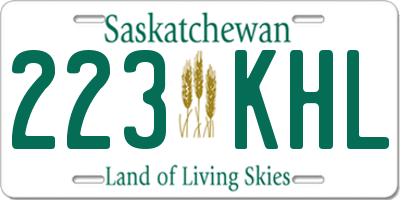 SK license plate 223KHL