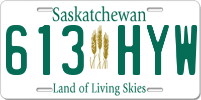 SK license plate 613HYW